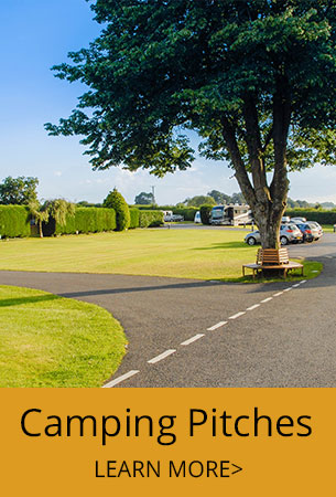 Touring Campsite in Somerset